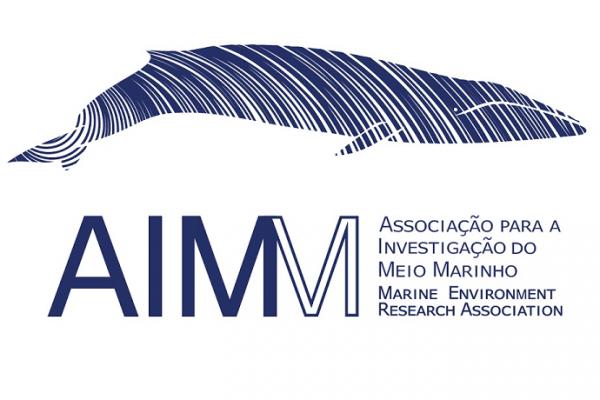 Client SEO - AIMM Portugal