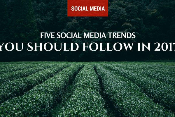 Five Social Media Trends You Should Follow in 2017