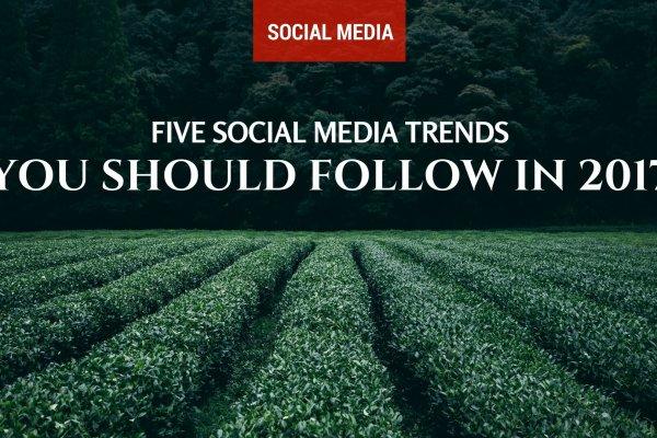 Five Social Media Trends You Should Follow in 2017