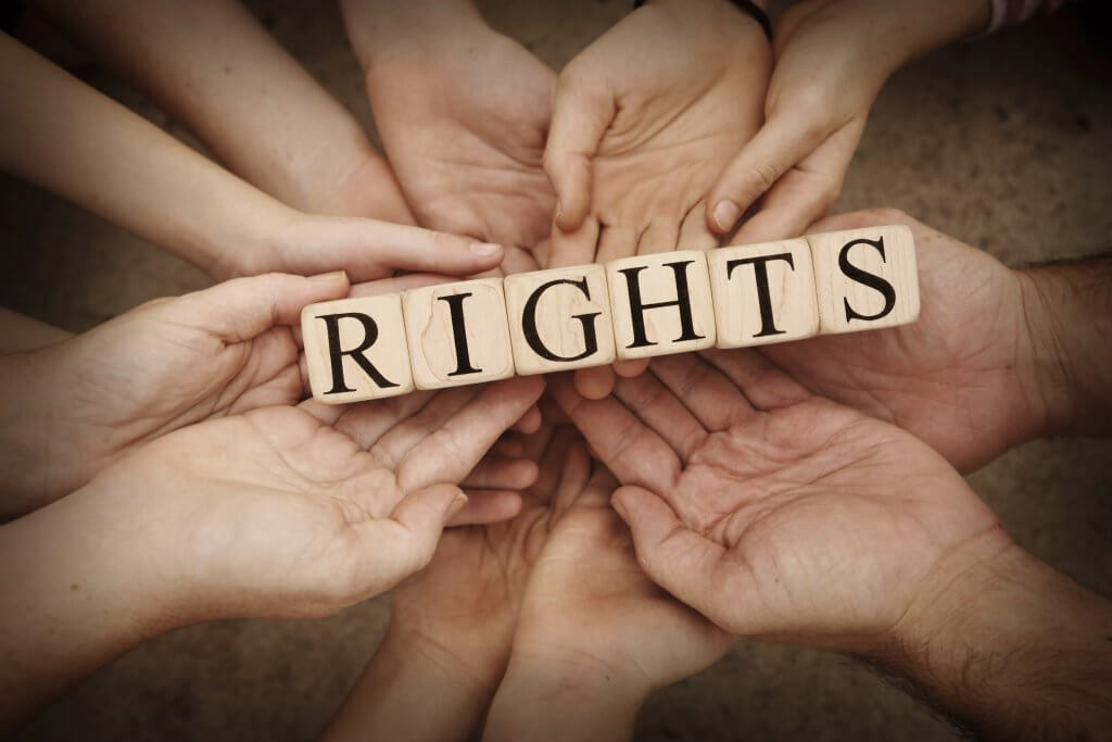 Os novos direitos da proteção de dados pessoais