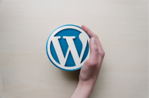 Como Otimizar o seu Webiste em WordPress para SEO