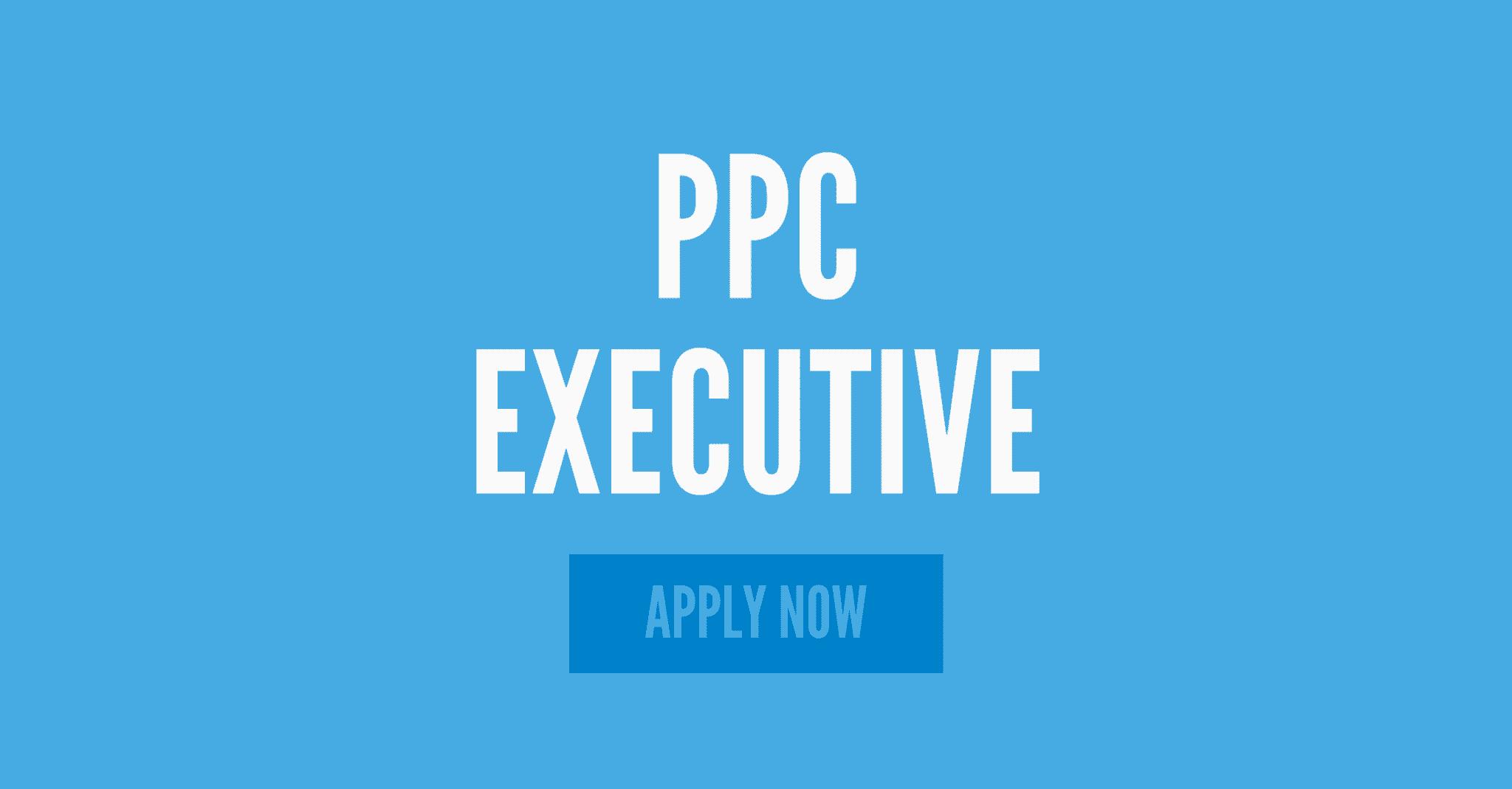 ppc & google ads executive
