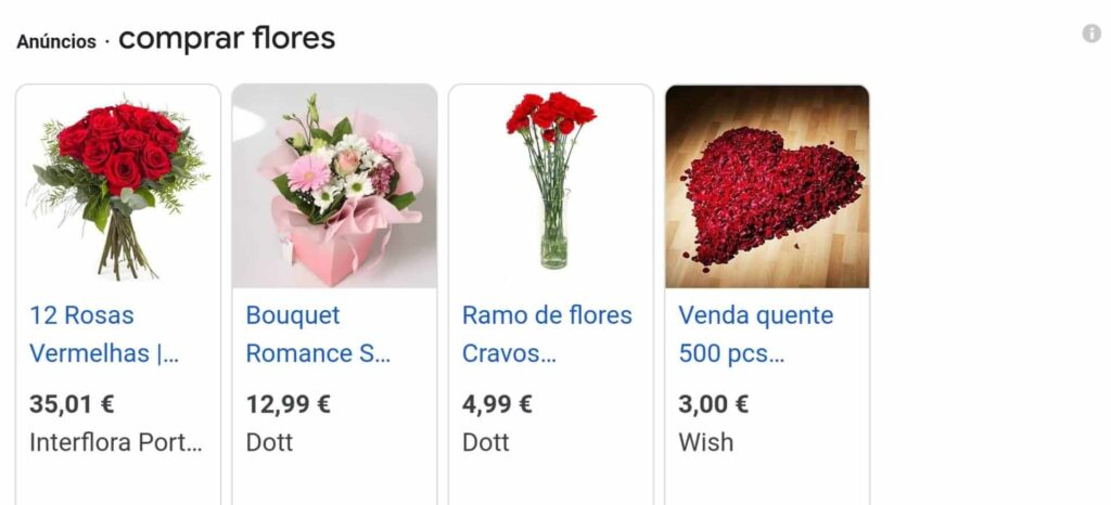 Google Shopping Campaign example